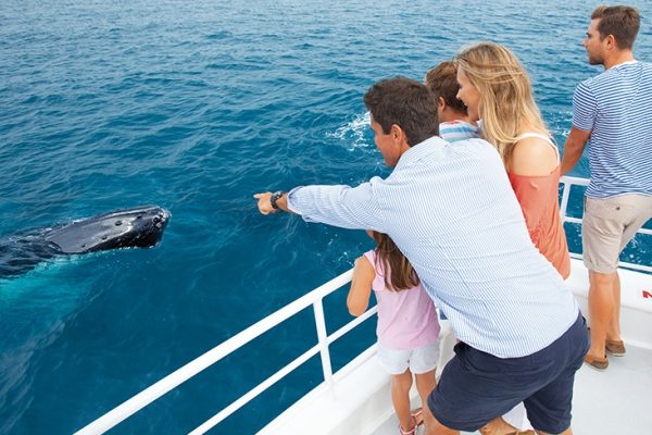 Incentive Activities and Spouse Tours