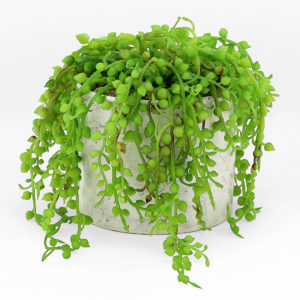 Housed in a pot with a natural marble effect, this faux potted plant will add a nice touch of greenery to your event.