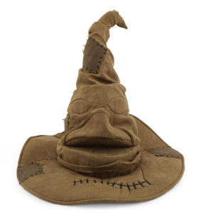 Harry Potter hat.