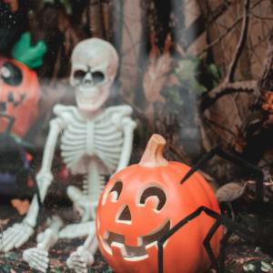 Horror/ Halloween