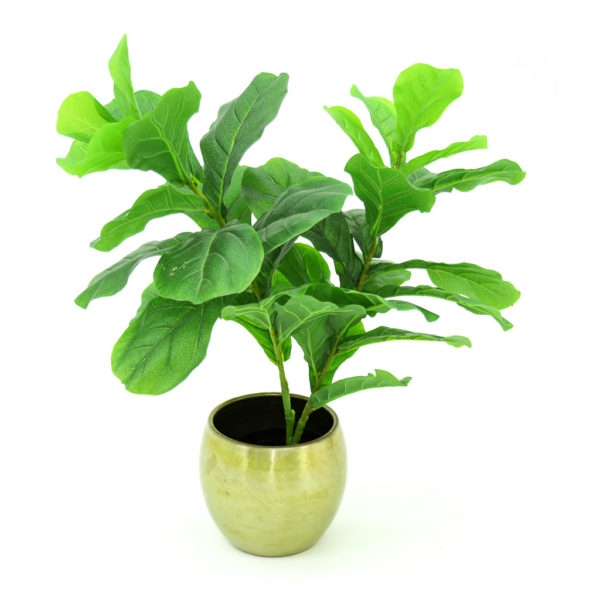 Better than the real thing, our collection of artificial plants and trees are high quality and look great! These elegant and stylish faux topiary ficus trees create a formal, yet relaxing space. Stunning green leaves, natural brown trunk in a black pot. 110cm high.